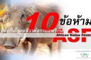10 ข้อห้ามป้องกันโรคอหิวาต์สุกรแอฟริกัน ASF
